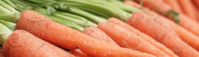 Marchewka - 21 cennych warzyw